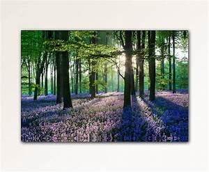 Bilder Natur Leinwand : 100x70cm leinwand bilder xxl wandbild lavendel wald natur b ume leinwandbild ebay ~ Markanthonyermac.com Haus und Dekorationen