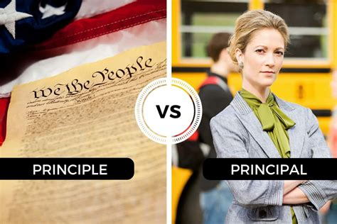 Principle vs Principal - Differences between them and when ...