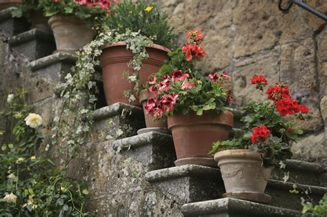 tuscan garden design bella terra grand designs