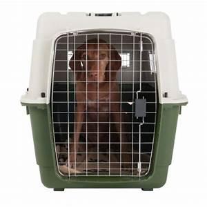 Grande Cage Pour Chien : feria cage de transport pour chien et chat zooplus ~ Dode.kayakingforconservation.com Idées de Décoration