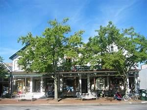 Southampton Main street