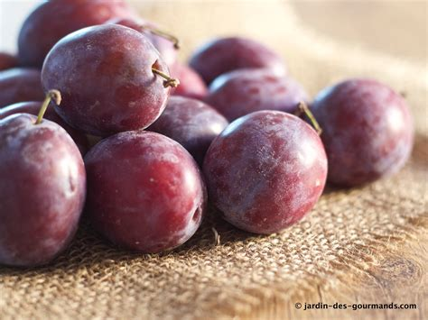 blogs recettes cuisine crumble de prunes rouges jardin des gourmandsjardin des