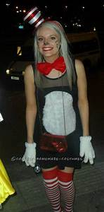 Super-Easy Homemade Women's Cat in the Hat Costume ...