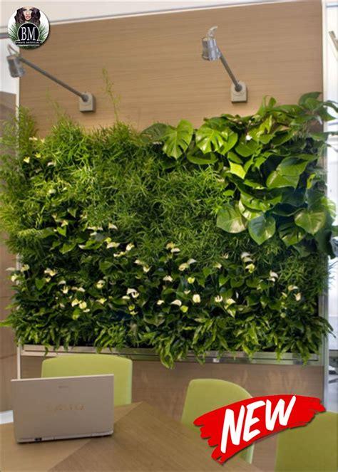 giardino verticale piante in verticale
