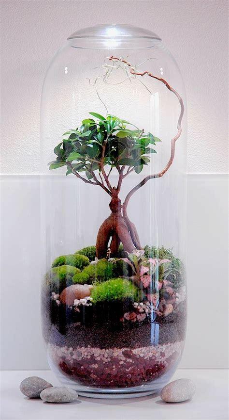 Terrarium Miniature Mini World Terrarium Kit Hoovering By London