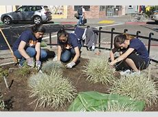UC Berkeley students take part in community work day