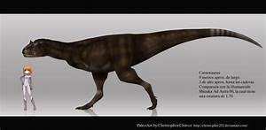 The gallery for --> Carnotaurus Vs T Rex Size