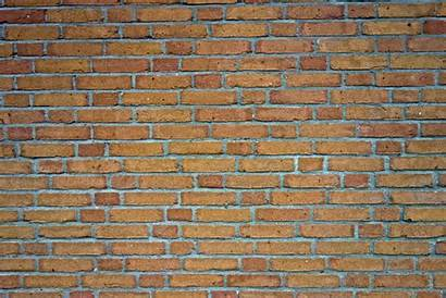 Brick Clipart Texture Transparent Batu Bata Concrete