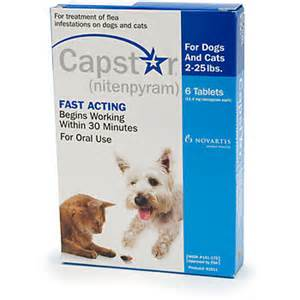 capstar for cats capstar for dogs and cats 2 25 lbs 6 tablets