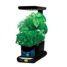 miracle gro aerogarden sprout kit canadian tire