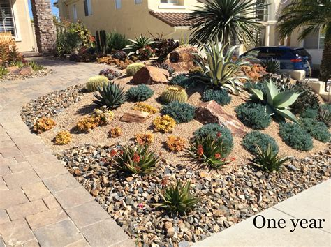 landscaping with succulents ideas inspirations find your best style of succulent landscaping for your garden design tenchicha com