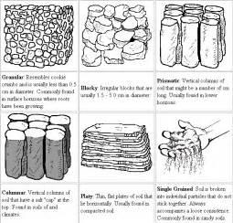great common factor worksheet soil management