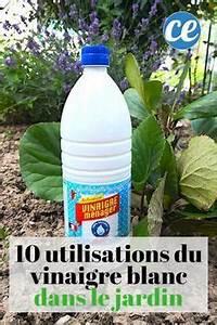 Vinaigre Blanc 14 Desherbant : 10 utilisations tonnantes du vinaigre blanc dans le ~ Melissatoandfro.com Idées de Décoration