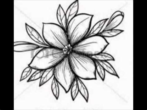 bloem tekenene getekende bloemen