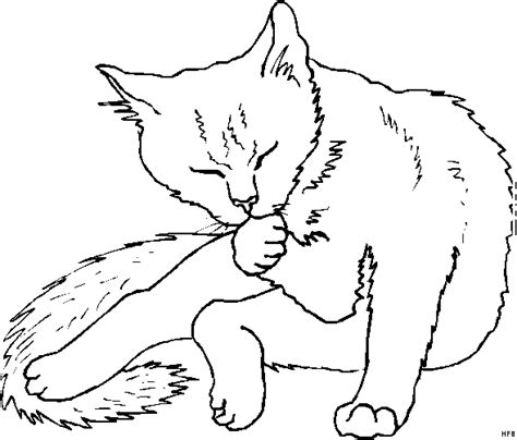 katze putzt sich ausmalbild malvorlage tiere