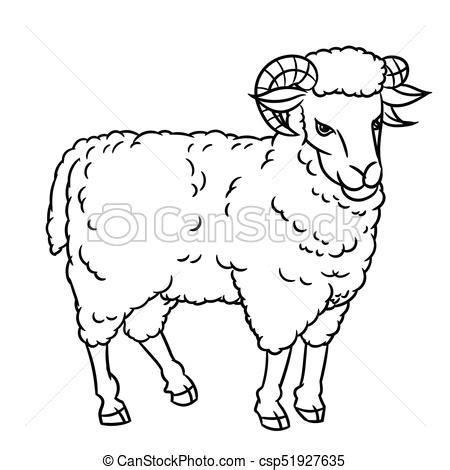 hand drawing sheep vector illustration hand drawing sheep