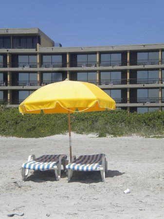 umbrella and lounge chair rentals picture of cocoa