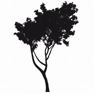 Stickers Arbre Noir : stickers arbre salon ~ Teatrodelosmanantiales.com Idées de Décoration