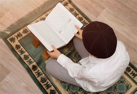 learn quran reading   tajweed  beginners
