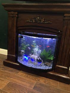 aquarium advice aquarium forum community beaucastles