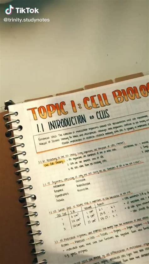 study notes tik tok video   high school