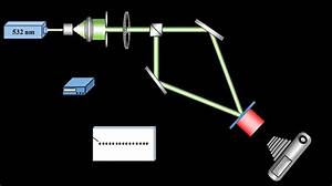 Schematic Diagram Of The Setup Used To Monitor Self