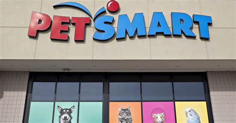 Petsmart Facing Allegations Of Mistreating Animals During