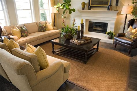 Rugs That Go With Brown Leather Couch by 47 Beautifully Decorated Living Room Designs