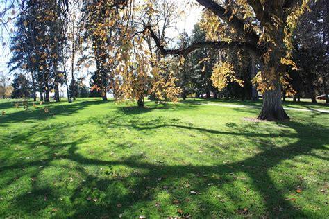 cheesman park denver  city park
