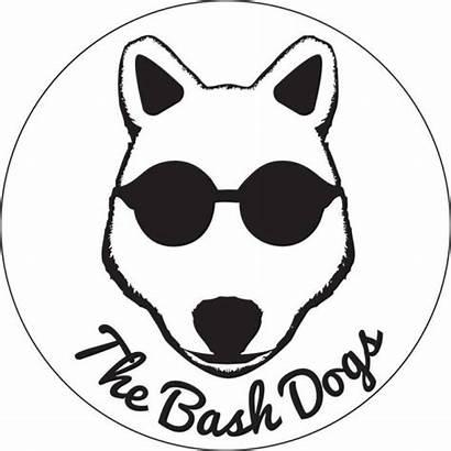 Bash Dogs Maybury Sons Nick Solar Psychedelic