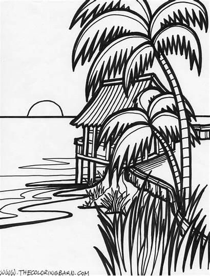 Tropical Coloring Drawings 02kb 1000