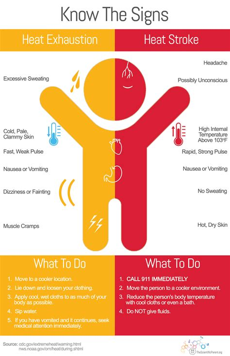 Stroke vs Heat Exhaustion Infographic