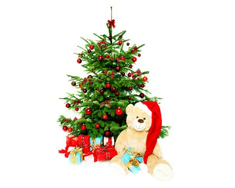 pictures new year winter hat christmas tree present teddy