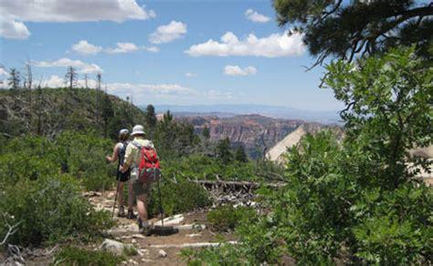 hiking  zion zion national park  national park