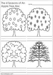 Apple Tree Seasons Worksheet