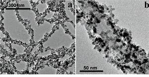 Magnetic Properties of Nanowires guided by Carbon ...