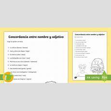 * New * Ficha De Actividad Concordancia Nombre Y Adjetivo Sustantivos