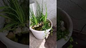 Solar Teichpumpe Mit Akku Und Filter : solar pumpe springbrunnen nkasp2 solarpumpe mit akku und led teichpumpe youtube ~ Eleganceandgraceweddings.com Haus und Dekorationen