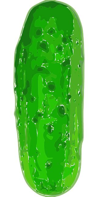 gherkin cucumber green  vector graphic  pixabay