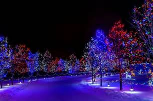 winter holiday merry christmas happy new year nature snow street trees night lights decorations