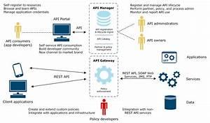 Api Portal Overview