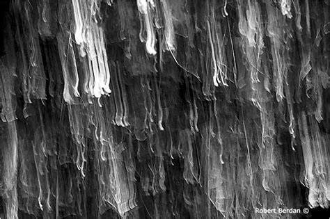 Abstract Black And White Photography Nature by Black And White Abstract Photographs The Canadian Nature