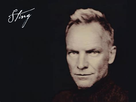 Sting Images Sting Hd Wallpaper And Background Photos