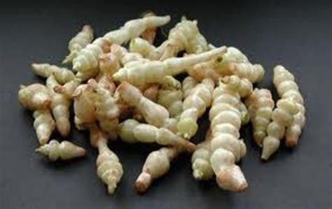 cuisiner chinois des légumes et des fruits oubliés guide resto