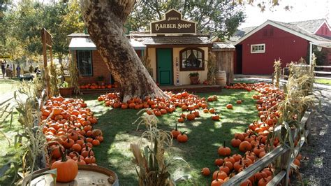 Jacksonville Oregon Pumpkin Patch by The Pumpkin Patch Train Ride In Southern California That S