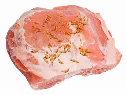 Meat Theory Raw Proves Comes Science