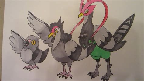 draw pokemon  pidove  tranquill