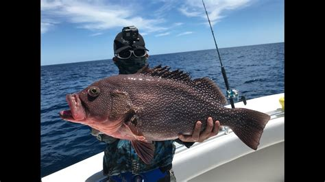 bottom fishing carolina north