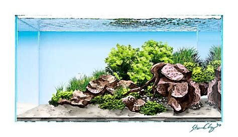 Aquascapes Hawaii by Aquasketch A Digital Layout Design Aquascaping