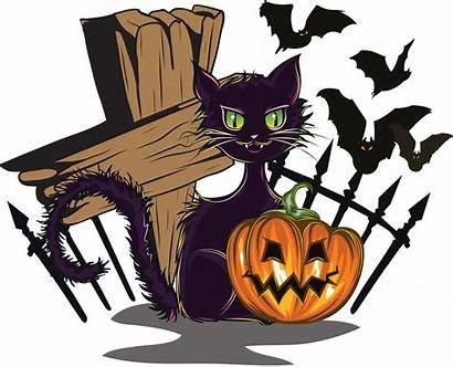 Halloween Holidays Web Pngimg